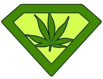 Autoflowering Cannabissamen