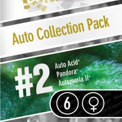 Auto Collection Pack #2 - 6 Samen