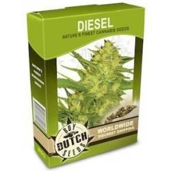 Diesel - 10 Samen