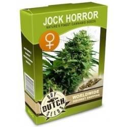 Jock Horror Feminisiert - 5 Samen