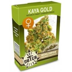 Kaya Gold Feminisiert - 5 Samen