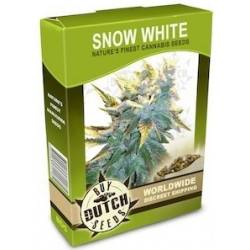 Snow White - 10 Samen
