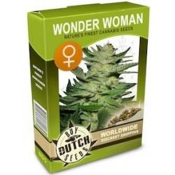 Wonder Woman Feminisiert - 5 Samen